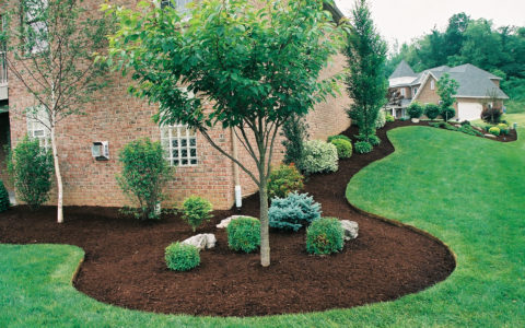 Tacoma Landscape Maintenance Services
