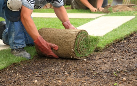 Landscape Construction - Sod, Hardscapes, Irrigation Systems
